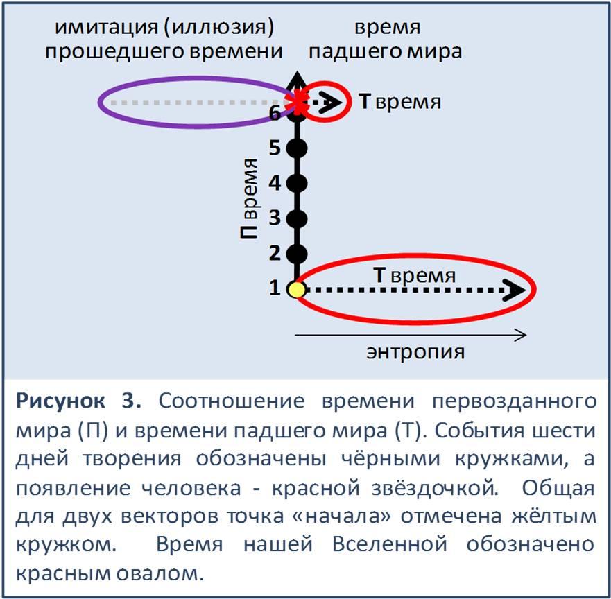 Accelerator hypothesis