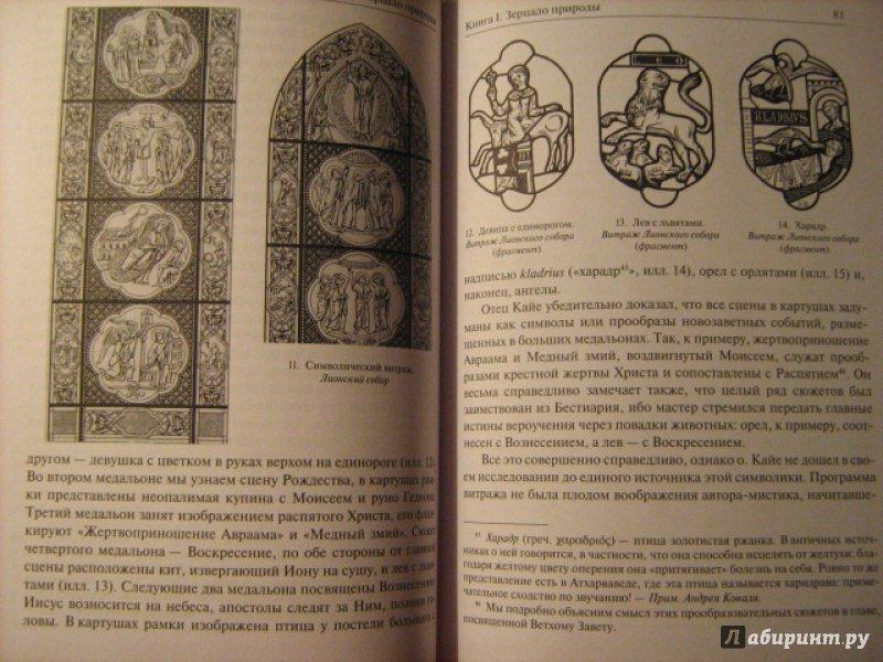 Книга Религиозное искусство xiii века во Франции Портал Богослов ru Книга Религиозное искусство xiii века во Франции