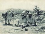 О милосердии – На 20-ю Неделю по Пятидесятнице (Лк. 7, 11-17)
